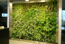 Very Cool Green Ideas / What will they think of next?