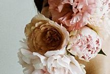 ・flora・ / by Anne Marie Hanna