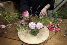Floral Design demonstrated / by Mada Vorster