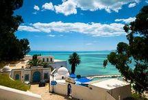 Puglia : Sicily : Tunisia / Puglia > Sicily > Tunisia