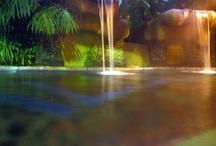 Swim Time / by Annameria Minton