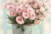 love pink <3 / by Maddie Hunt