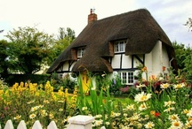My English Tudor home / by Laura Hutton