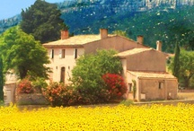 Provence and the South of France / Provencal living...