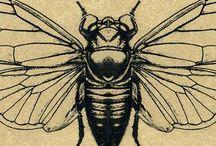 You bug me