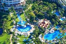 Best Hotel Pools / Best hotel pools, waterslides, lazy rivers, infinity pools, water parks and more for water lovers!