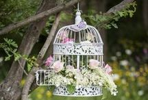 Bird Cages, Lanterns and Vases