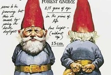 Gnome homes / by Anita Gallagher