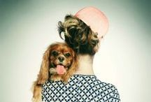 Animal Instinct / Here's to our four-legged family.  / by Gilt Groupe