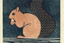 Squirrel / Ardillas <3