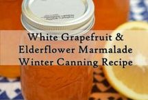 Canning Recipes / Canning Recipes / by The Homestead Survival
