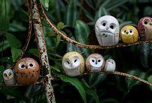 Ceramics / by Sydne Parker