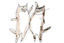 Catlover / Gatos, cats, chats, love!