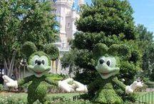 Florida Hidden Mickeys