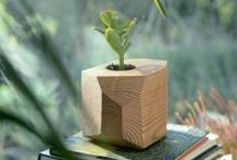 Planters / Containers / by Slowgarden