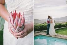 Wedding Day Photo Love