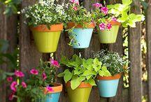 Garden -- Pots & Planters