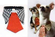 PETS / IDEAS  to make for your 'best friend' / by Helen's Handbags