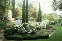 MOON GARDEN / If you work all day. A white garden is a lovely garden to have. In the dark white will show when other colors will not...