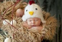 CHICKENS AND CHICKS / All things chicken ~ just because we love them and have much to learn from our feathered friends!