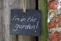 I'm in the Garden / by Anthea Var