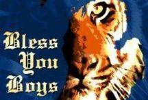 My Favorite Team...Detroit Tigers! / by Carol Boverhof