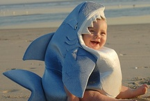 SHaRks aRe CooL