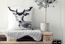 Recycled / Esp. wood pallet ideas.