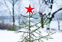 Christmas Tree / Joulu. Karácsony. Natale. Ziemassvētki. Jul. Kalėdos. Noël. Christmas. Коледа. Boże Narodzenie. クリスマス  Navidad. Χριστούγεννα. Natal. Jõulud. Noel. Рождество.