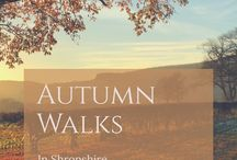 Shropshire | local walks and walking events in Shropshire & beyond / Walks in the Shropshire countryside | links to descriptions of Shropshire walks of varying lengths and difficulty