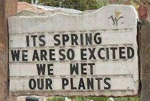 Funny Stuff / Hahahaha!