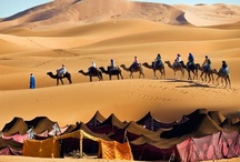 A Nomad's Life / by MaryAnne W