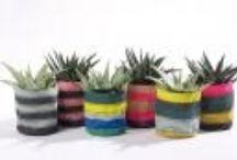 Livv Lifestyle - Tuin / garden