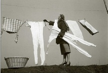 Hung Out to Dry / by Dianne M M