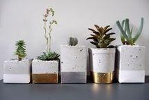 Livv Lifestyle - ceramics
