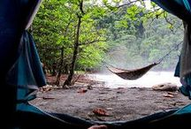 Camping / by KatieGerry