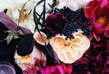 flora / by Christina Harley