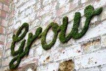 Gardening | Kertészkedés