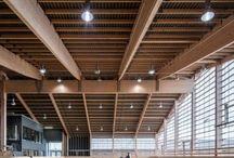 Future indoor arena