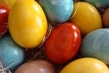 Holiday Celebrations: Spring / With spring comes hope, joy, sunshine, and excitement. Springy ideas for holidays like Easter are here. / by Holly Lefevre (504 Main)