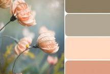 Color Schemes I Love