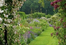 Gardens and Landscaping Ideas / by Beatrice Briseño Carreon