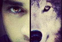 """Hell Hounds / Add to your Goodreads """"TBR"""" http://www.goodreads.com/book/show/18139066-hell-hounds Thanks in advance :) / by Karina Martinez Veliz"""