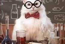 Biology/Chemistry major probz / by Lindsay Ashley