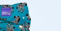 zebra crossing / black and white and cute all over - 1 of 3 NEW PRINTS