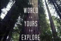 Travel and Explore / Tips on how to travel and explore the world, inside and out.  / by John F. Blair, Publisher