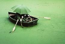 ★ green days ★ / by Sandra Stoiber Fotografie