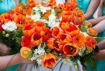 Future Mrs Mann  / Wedding! / by Camille Jungck