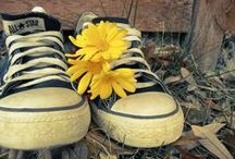 Converse shoes / Shoes that are Converse. So comfortable and fashion chic.