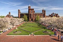Enid A. Haupt Garden / The Enid A. Haupt Garden is a public garden in the Smithsonian complex in Washington, D.C. Covering over four acres, it is situated between the Castle and Independence Avenue and has provided a welcomed respite for Smithsonian visitors and residents of Washington since it opened in 1987 as part of the redesigned Castle quadrangle.